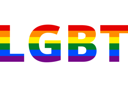 LGBT「パートナーシップ認証制度の創設を求める請願」の採決 | 日高市議会12月議会報告