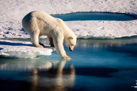 一般質問全文:脱炭素社会の実現について<令和2年第5回定例会 12月9日>| 日高市議会
